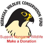 nebraska wildlife fun